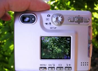 digital_camera_lcd_by_dtack.jpg